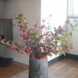 花ナスと紅葉の枝 11月中旬