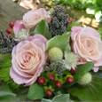 お見舞いのアレンジメント バラにクロヒエ、ヒペリカム、ステルンクーゲルなど 5月中旬