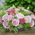 スナックの開店祝い バラ各種とグリーントリュフ 5月初旬