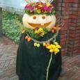 岩崎ミュージアム ハロウィンの装飾 ⑴ 10月下旬