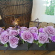 カーネーション(ムーンダスト)と青系のバラのアレンジメント 5月中旬