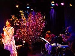 日野美歌さん 「桜ライヴ 2007」 その2 4月初め