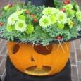 「西洋館ハロウィン装飾」岩崎ミュージアムにて 10月下旬(2)