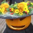 「西洋館ハロウィン装飾」岩崎ミュージアムにて 10月下旬(3)