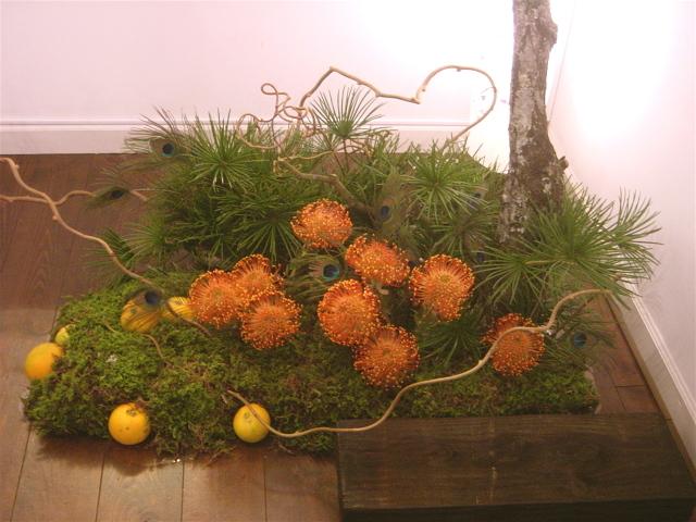今井アレクサンドルさん「赤富士」展のための和風庭園 ギャラリー「あいおらいと」にて 12月上旬