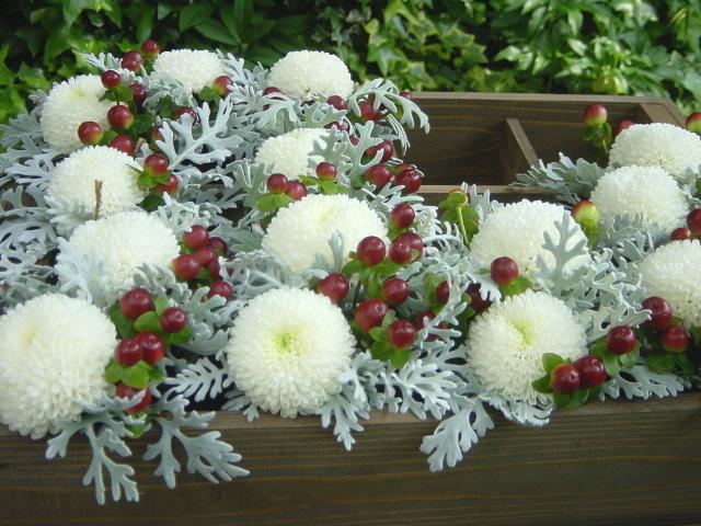 カフェ 「ル・ジャルダン・ドゥ・ジュリアン」 みなとみらい テーブル花、ピンポンマムで 5月初旬