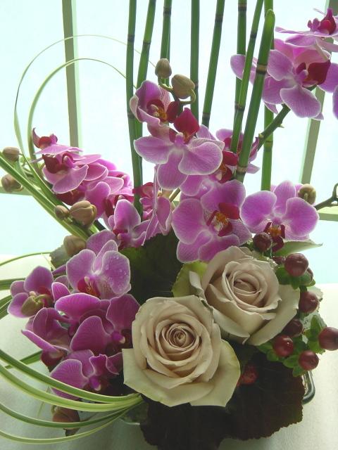 胡蝶蘭とバラ(デザート)、トクサのアレンジ 4月初旬