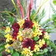 ワインレッド、黄色の花にオクラの枝を添えて 10月中旬