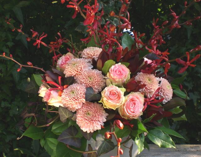 ピンクバラ、ピンポンマム、モカラなど 2009年10月末