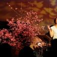 日野美歌さん「Live Sakura Cafe 2011」4月上旬
