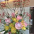 プロテア、ピンクッション、バラの実など 10月下旬