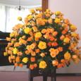 ピアノコンサートスタンド花(山手イギリス館にて)5月下旬