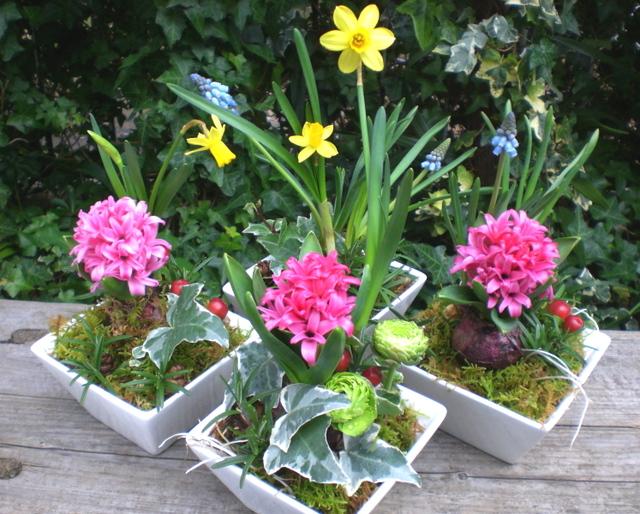 カフェの開店1周年の祝い花 小さなアレンジメントを4つ寄せて 2月下旬