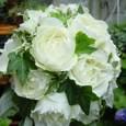 白バラ(ブルゴーニュ)、アイビー、ラムズイヤーのブーケ 7月