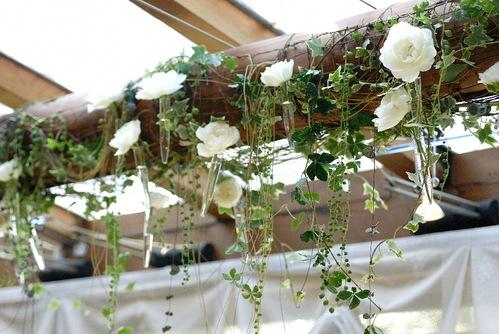天井の太い柱に蔓を巻きつけて