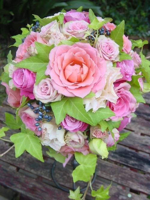パッションピンク~サーモンピンクのバラで マジックモカ、シャミラ、ペピータ、ビューティーヴァイオジェルなど 10月