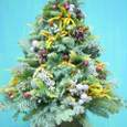 生クリスマスツリー 12月中旬