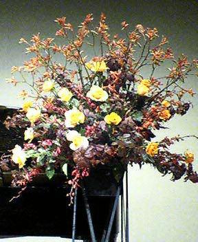 ピアノの発表会、舞台の花(バラ、カンガルーポー、モカラなど) 4月末