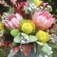 横浜中華街のお茶や「悟空」さんの開店花(キングプロテア、ピンクッションなど)