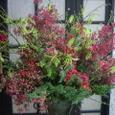 本牧のBar7周年記念のお花(クリスマス・ブッシュ、グロリオサなど)