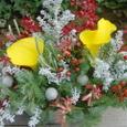 カラーとワイルドフラワー(コチア、シルバーブルニア、クリスマス・ブッシュなど)
