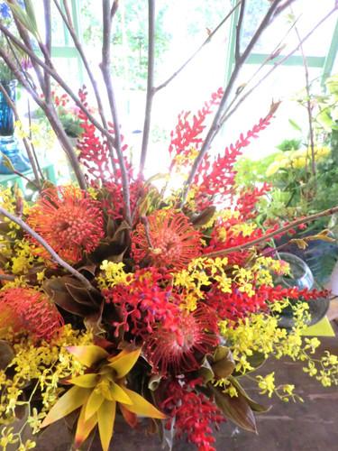 ピンクッション、サンゴアナナス、オンシジューム、ライデンの枝のアレンジメント