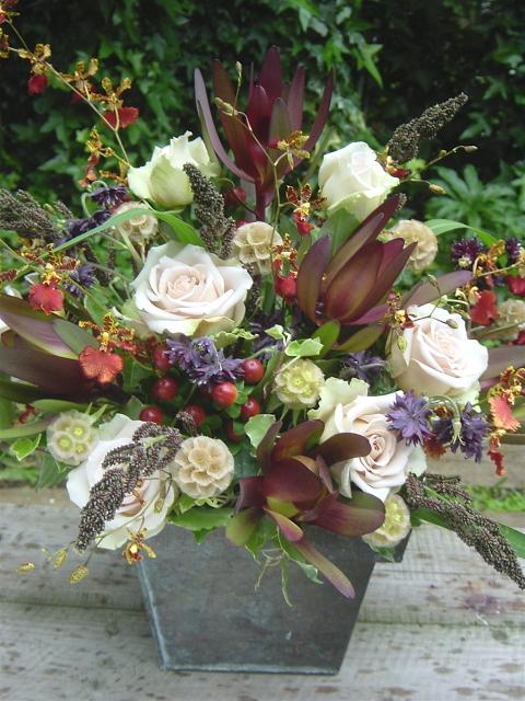 ネイティブフラワーの開院祝い リューカデンドロン、バラ(フジ)など茶系の花を使って